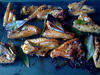 Chicken wings with lemon and black pepper